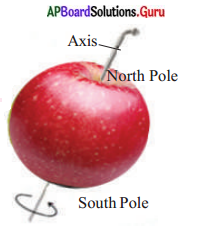 AP Board 6th Class Social Studies Solutions Chapter 2 Globe – Model of the Earth 4