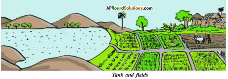 AP Board 7th Class Social Studies Solutions Chapter 3 Tanks and Ground Water 3