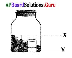 AP 10th Class Biology Bits Chapter 2 Respiration 10