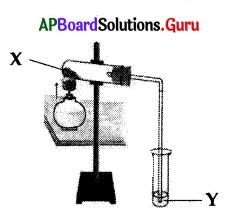 AP 10th Class Biology Bits Chapter 2 Respiration 6