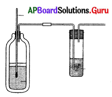 AP 10th Class Biology Bits Chapter 2 Respiration 7