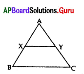 AP 10th Class Maths Bits Chapter 8 Similar Triangles with Answers 30