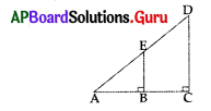 AP 10th Class Maths Bits Chapter 8 Similar Triangles with Answers 4