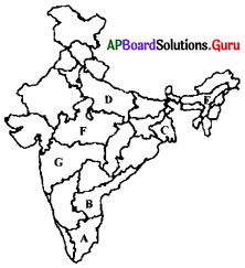 AP 9th Class Social Bits Chapter 6 Agriculture in India with Answers 4